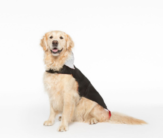 DYLAN - the vampire - WHY WE LOVE THIS COSTUME: Dylan loves attention but not all the frills. This cape is perfectly scary and it even has a reflective collar to ensure he can be seen. (CNW Group/Toronto Hydro Corporation)