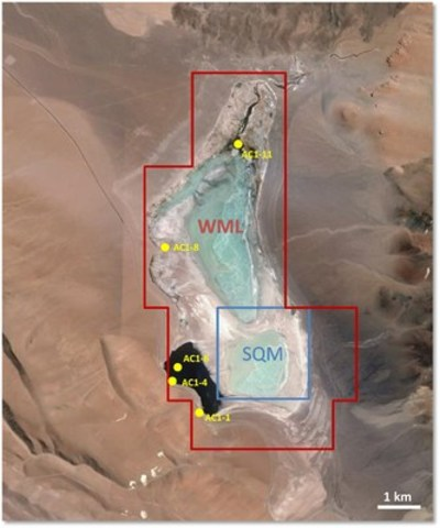 Figure 1: Land Ownership at Salar de Aquas Calientes Norte and location of historical exploration sampling undertaken in 1993. (CNW Group/Wealth Minerals Limited)