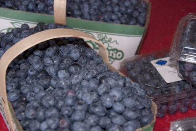 Norfolk County is Ontario's Blueberry Capital (CNW Group/Norfolk County)