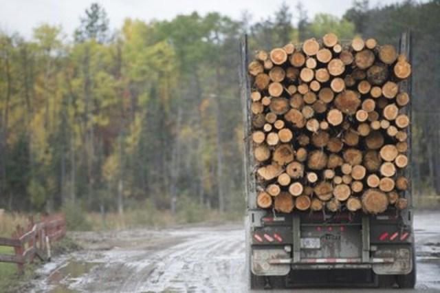 Un camion transportant des billes au moulin (Groupe CNW/EACOM)