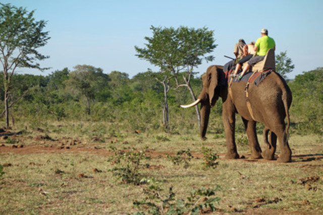 An elephant carries a mahout and two tourists in southern Africa. World Animal Protection believes wild animals should be left in the wild and not be used for entertainment. (c)World Animal Protection  (CNW Group/World Animal Protection)