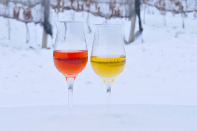 White and red Icewine Glasses in Vineyard. (CNW Group/Wine Country Ontario)