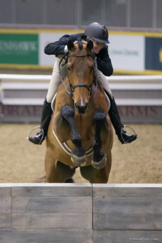 Second place in the $25,000 Knightwood Hunter Derby went to Ryan Roy riding Bayridge. Photo by Mackenzie Clark (CNW Group/Royal Agricultural Winter Fair)