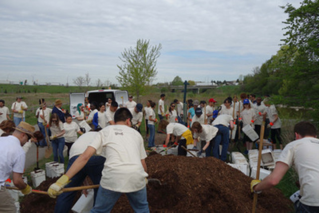 Co-workers from IKEA Canada gather to plant trees in celebration of their 17 year partnership with Tree Canada (CNW Group/IKEA Canada)
