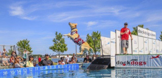 The DockDogs® Championships, is a dock jumping and diving sport for dogs with three main events: Big Air, Extreme Vertical and Speed Retrieve at the Redpath Waterfront Festival, June 19-21 along the two kilometre revitalized Queens Quay in Toronto, Free Admission (CNW Group/Redpath Waterfront Festival)