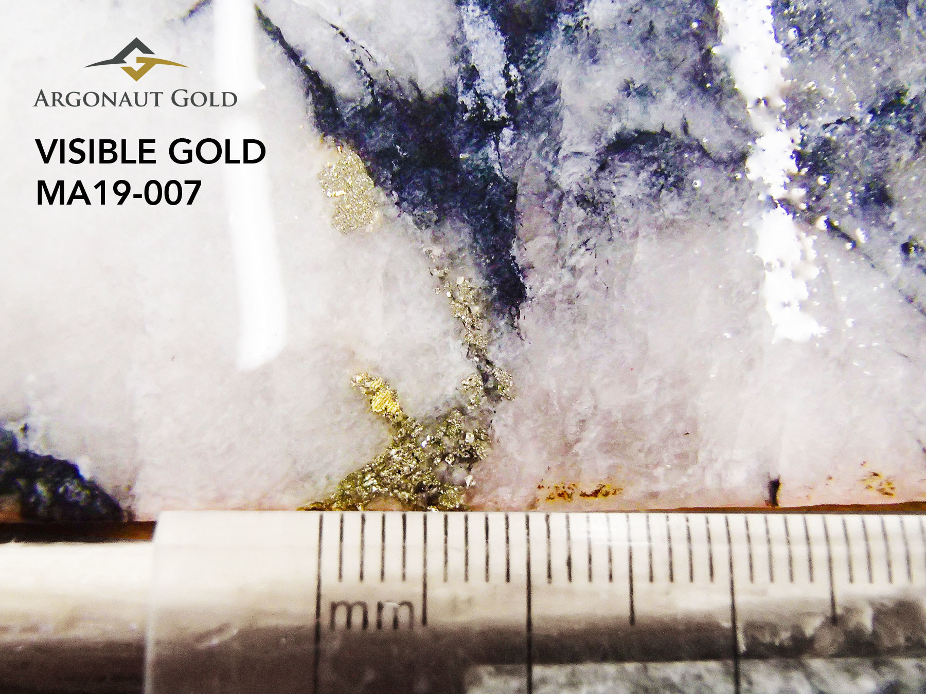 Figure 8: Visible Gold shown on drillhole MA19-007 (CNW Group/Argonaut Gold Inc.)