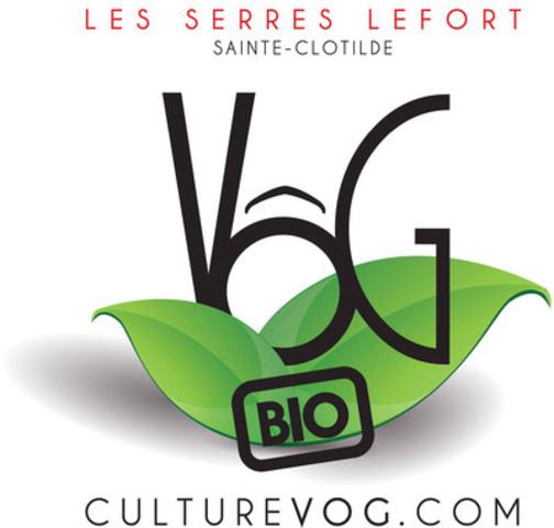 VÔG BIO : Grand gagnant, catégorie fruits et légumes aux Prix Gaïa 2013 (Groupe CNW/Les Serres Lefort)