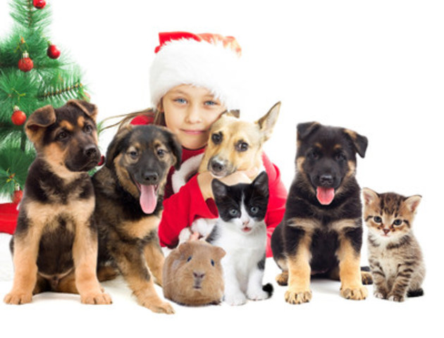 A festive event for you, and your pets! (CNW Group/Canadian Pet Expo)