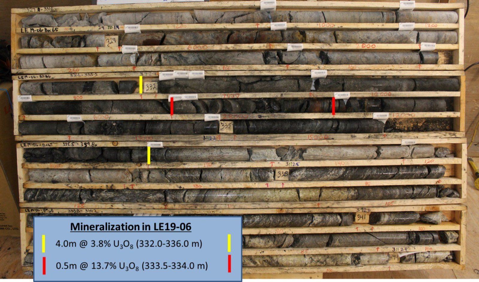 Figure 4 – Core Photo of Mineralization in Drill Hole LE19-06