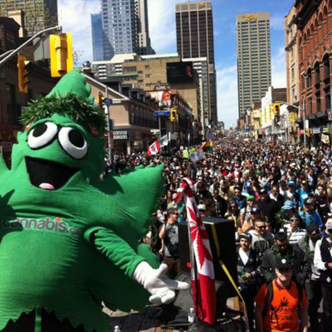 16th Global MariJuana March hits Toronto this Saturday! (CNW Group/Global Marijuana March)