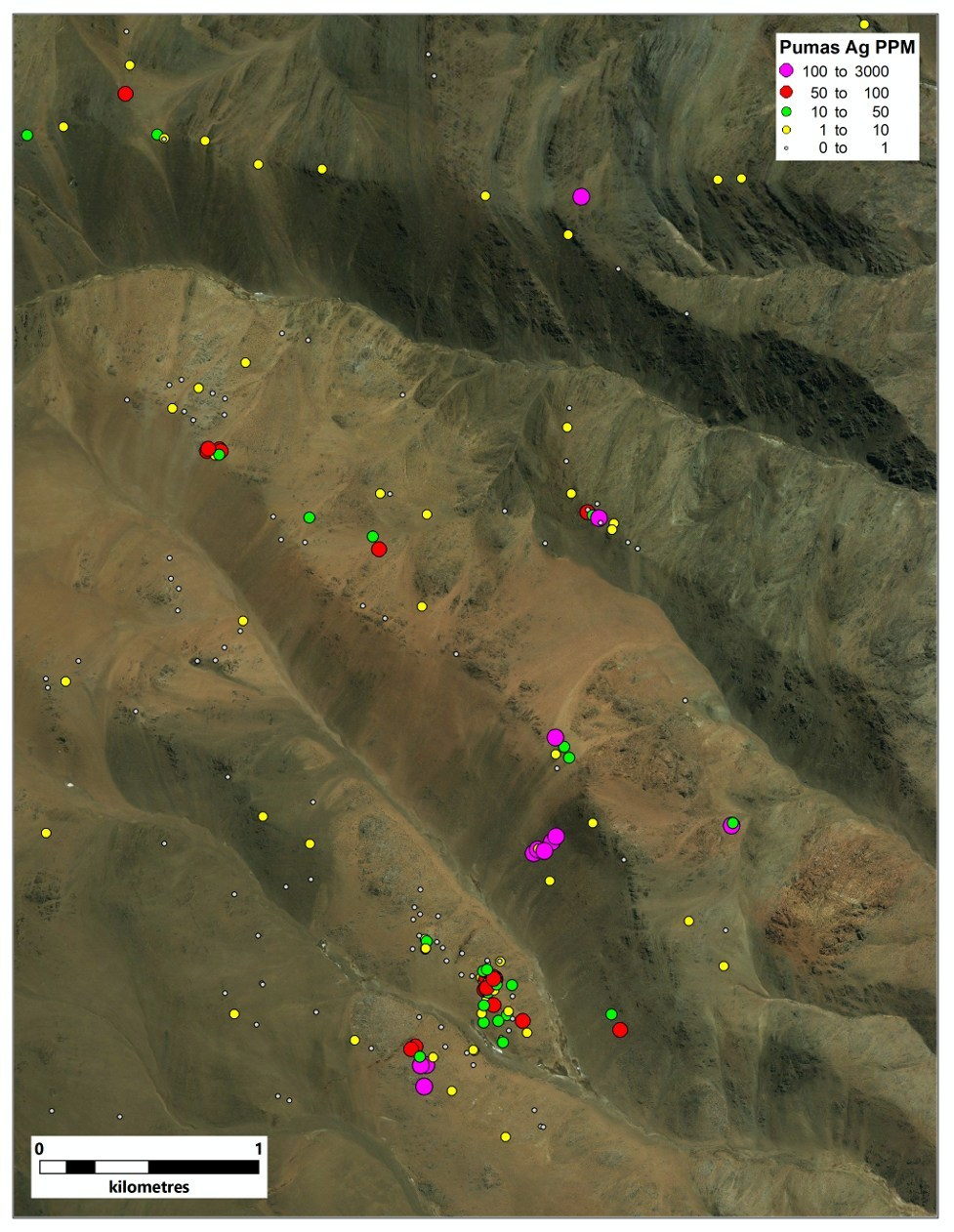Figure 4. Ag values at Los Pumas (CNW Group/Sable Resources Ltd.)