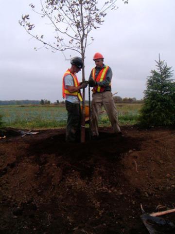 Plantation d'arbres à la carrière de Mirabel - Holcim Canada (Groupe CNW/Holcim Canada Inc.)