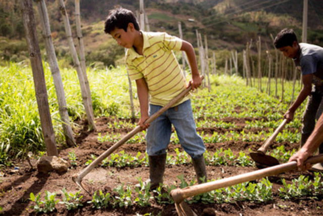 There is no simple solution to end child labour, but an important step is recognizing Canada's complicity in the problem, says World Vision Canada. Today, the aid agency released a report calling for new legislation to help eliminate child labour from products imported into Canada. (CNW Group/World Vision Canada)