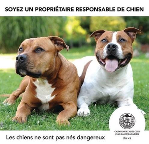 Soyez un propriétaire responsable de chien. Les chiens ne sont pas nés dangereux. Club Canin Canadien. CKC.ca (Groupe CNW/Club Canin Canadien)