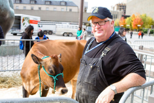 Larry Sheardown, set to show at The Royal Agricultural Winter Fair this November, brings country to City Hall this morning with his prize winning Jerseys (Photo credit: Mark Peachey, The Digitalist) (CNW Group/The Royal Agricultural Winter Fair)