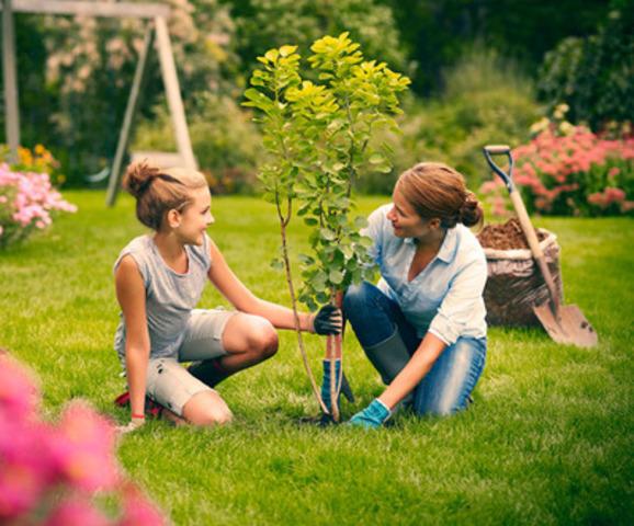 Découvrez tous les plaisirs du jardin sur www.DuJardinDansMaVie.com. (Groupe CNW/Fédération interdisciplinaire de l'horticulture ornementale du Québec (FIHOQ))
