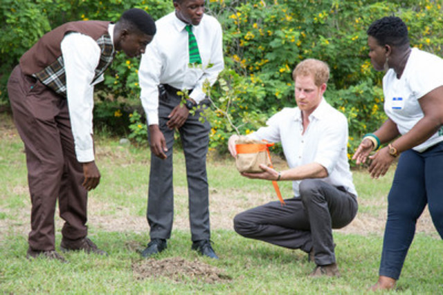 Prince Harry of Wales at the Victoria Park Botanical Gardens in St. John's during the city's annual Arbour Day Fair, part of an innovative sustainable program to encourage the public to return used plant bags in exchange for a tree of their own choosing.  #PrinceHarryAntiguaBarbuda (CNW Group/Antigua & Barbuda Tourism Authority)