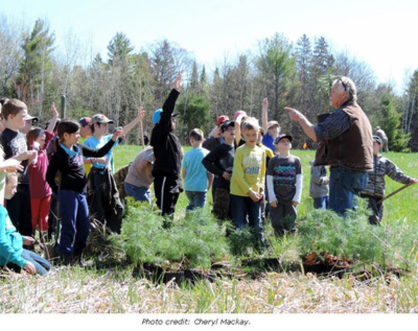 Peter Gagnon, Trees Ontario Field Advisor works with volunteers to plant trees (CNW Group/Trees Ontario)