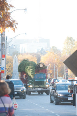 On Thursday November 10, the Gardiner Museum will kick off its annual 12 Trees exhibition with the delivery of a 35-foot white spruce, donated by Forests Ontario, with support from Ontario Wood (CNW Group/Forests Ontario)